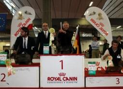 5-6/11/2011 Cesena Clubshow campionato sociale ABC