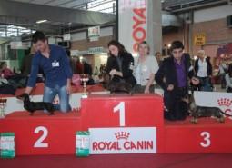 Campionato sociale ABC 2012 e Jubileum WUT  Cesena
