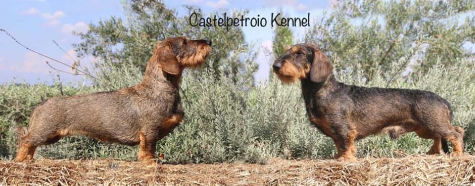 Mch Castelpetroio Fa festa e Mch Bambù di Poggio Petroio
