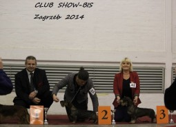ZAGREB CACIB and CLUBSHOW