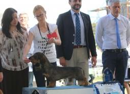 Castelpetroio WE 9/10/05/2015
