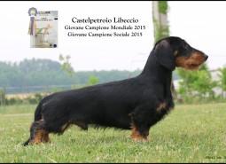 JWW  2015 CASTELPETROIO LIBECCIO