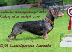 Castelpetroio Lavanda  è Slovakian Junior Club Champion