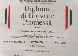 Castelpetroio Lingotto is JUNIOR ITALIAN CHAMPION/GIOVANE PROMESSA ENCI