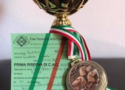 prove di Casaluce (Caserta) 23/4/2017