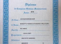 """IDS San Marino, primo titolo per """"UVA"""""""