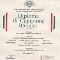 Ch it Diploma Vita [640x480]