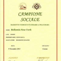 Diploma CH SOC 2013 Mela 001 [640x480]