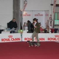 Campionato sociale ABC 2011