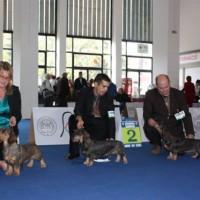 RCAC Eurodogshow Budapest