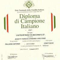 Ch ITALIANO DI BELLEZZA
