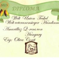 diploma chmondWUT Brioche