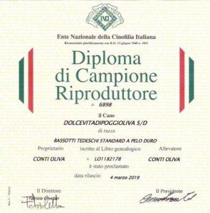 diploma VITA CH RIPRODUTTORE